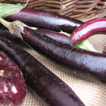 eggplants from winter green farm