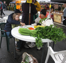 giant celery