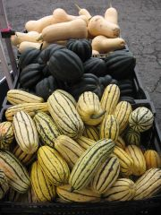 some winter squash