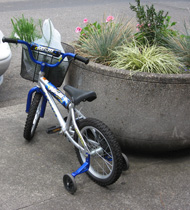 bike with training wheels and front basket full of produce