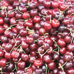 brooks cherries