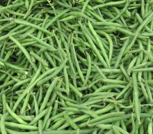 lots of green beans