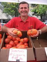 tomatoes di liguria