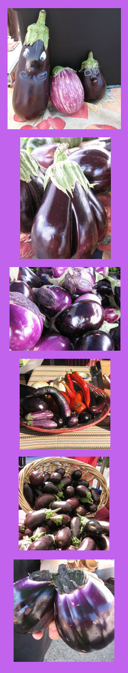 eggplants aubergine brinjal