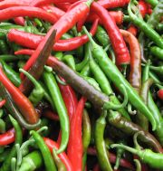 many peppers from kimberly farm