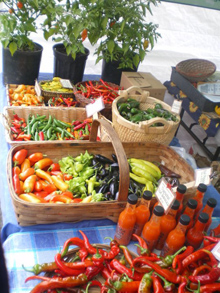 chili peppers and hot sauce at the gales meadow farm booth