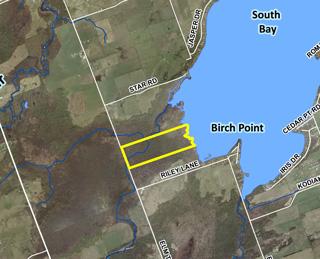 Weldon property on Balsam Lake