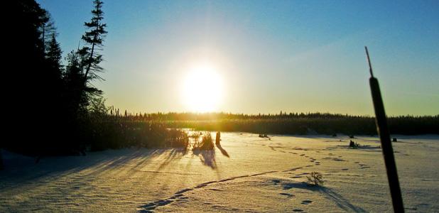 Winter sunset in Ken Reid Conservation Area