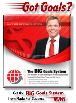 The BIG Goals System