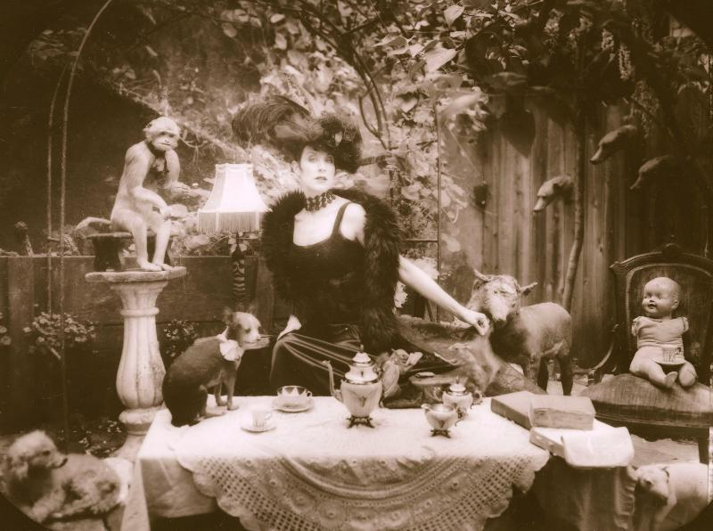 Jill Tracy with a taxidermy tea party