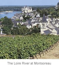 The Loire River at Montsoreau