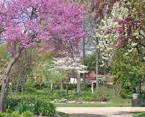 Viette gardens in spring
