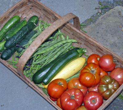 Vegetable harvest with heirlooms