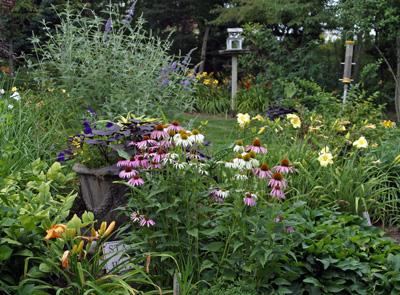 Summer Garden at Viette's