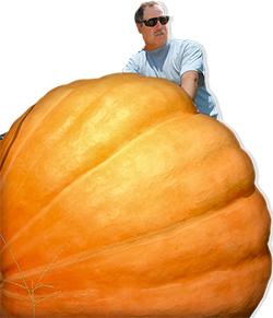WilliamLaytonGiantPumpkin