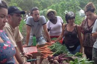 garden, produce, students