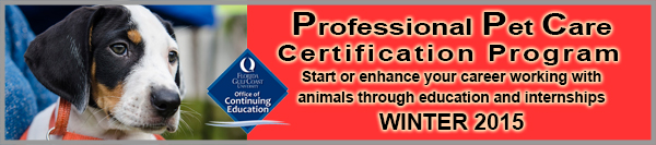 Pet Care Certificate Course Header