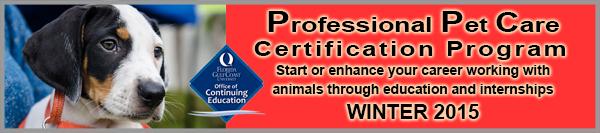 Pet Care Certificate Course Header