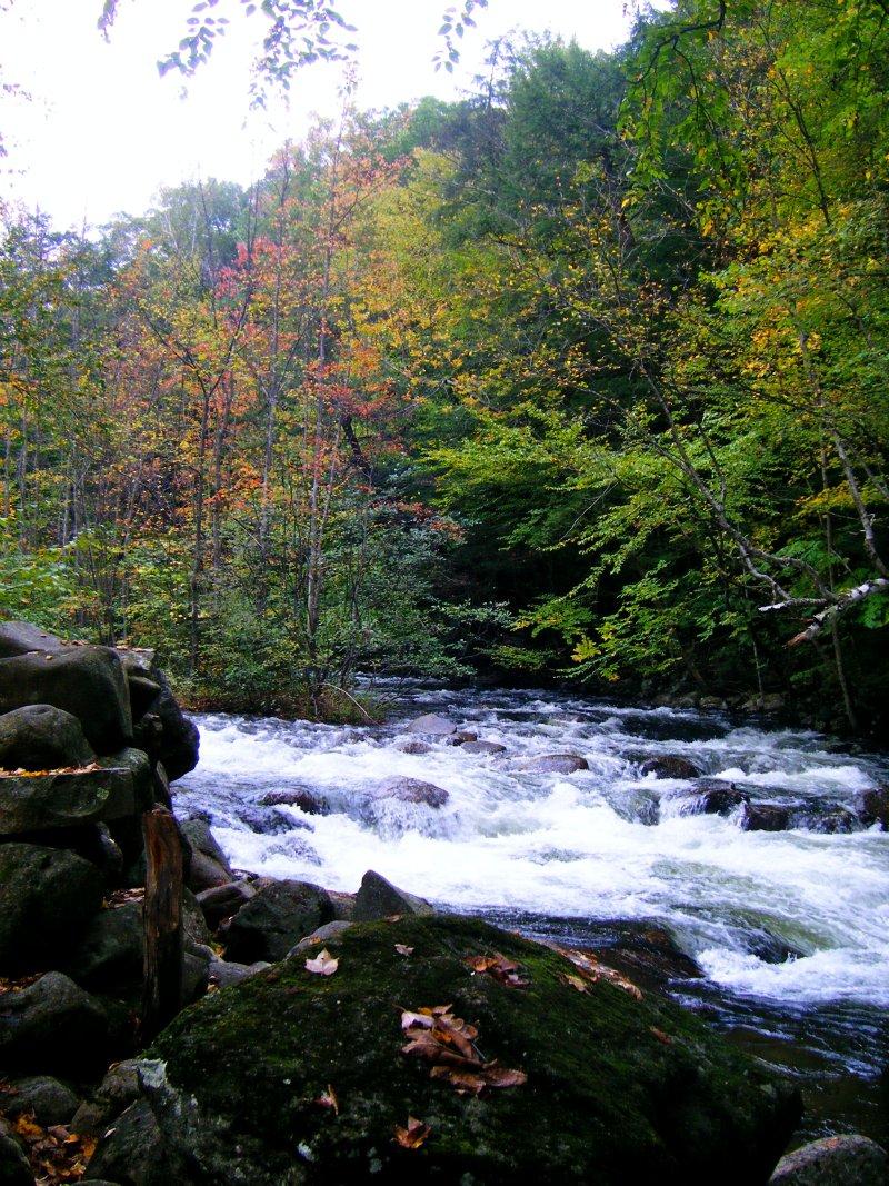 NH River