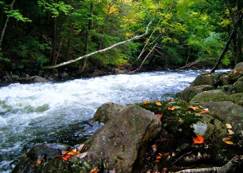 NH River2