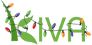 Kiva Micro Loans
