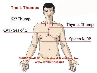 4 Thumps