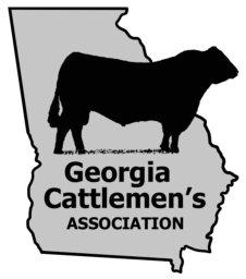 GCA New Logo