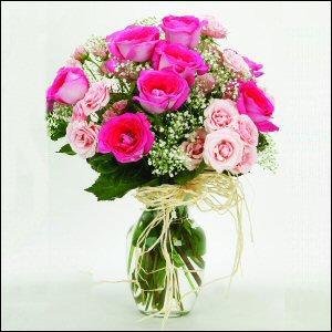 Flowers Rose Garden