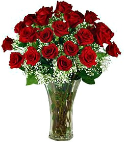 Roses Dozen