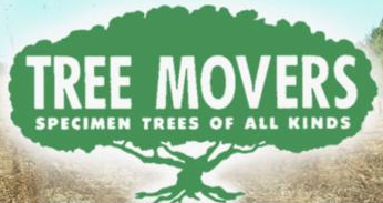 A to Z Tree Movers