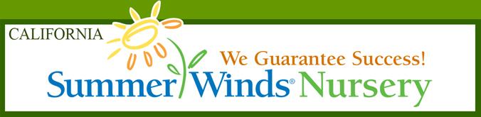 Summer Winds Nursery