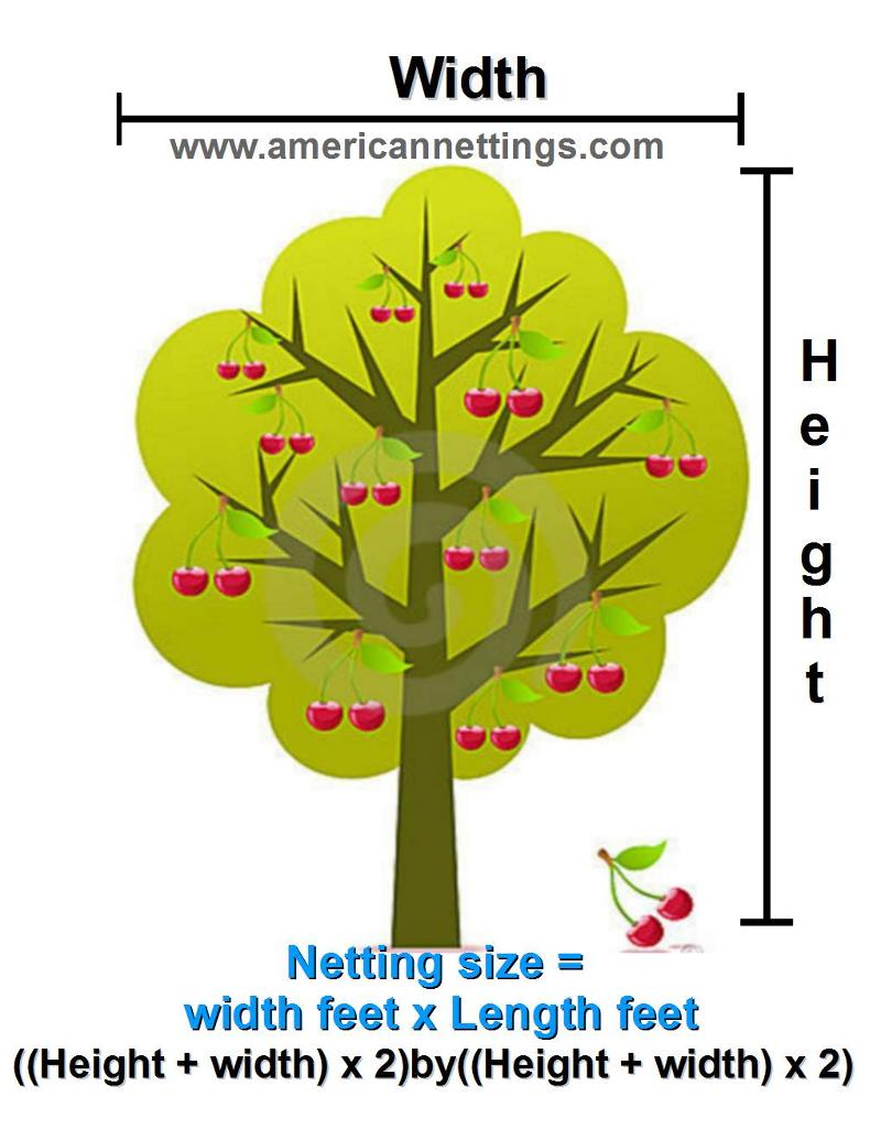 calculate the size bird netting you need to cover cherry tree