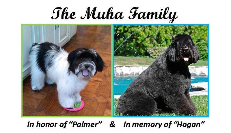 Muha Family