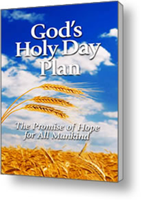 Holy Day Booklet
