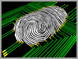 Cyber Forensics1