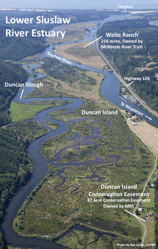Lower Siuslaw River Estuary-labeled