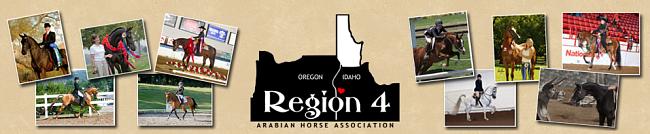 AHA Region 4 Logo