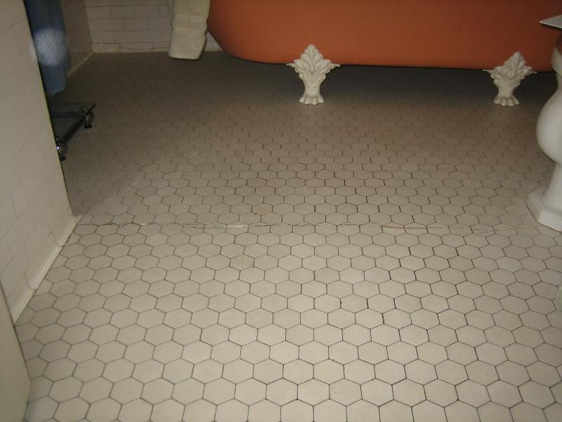 Tile Restoration/Preservation