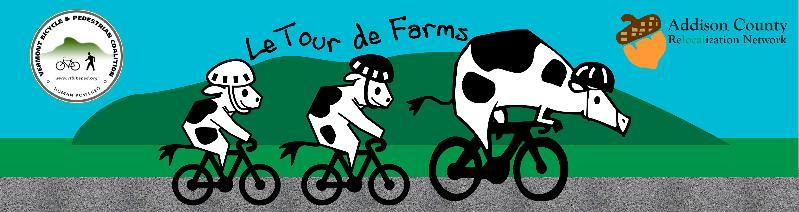 TdF Cows