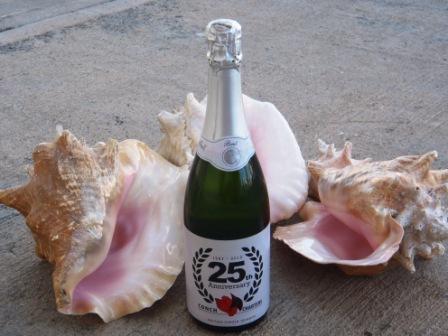 Conch Champagne