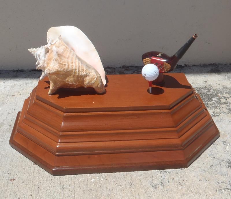Conch trophy
