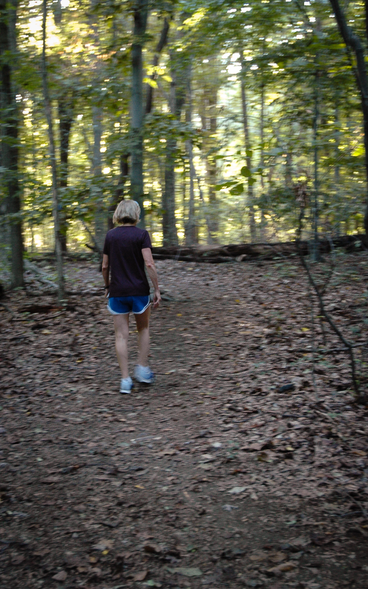 Lang trail near Yellow 39