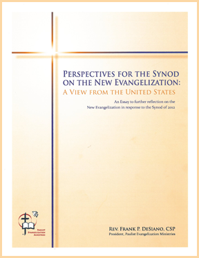 Synod Reflections