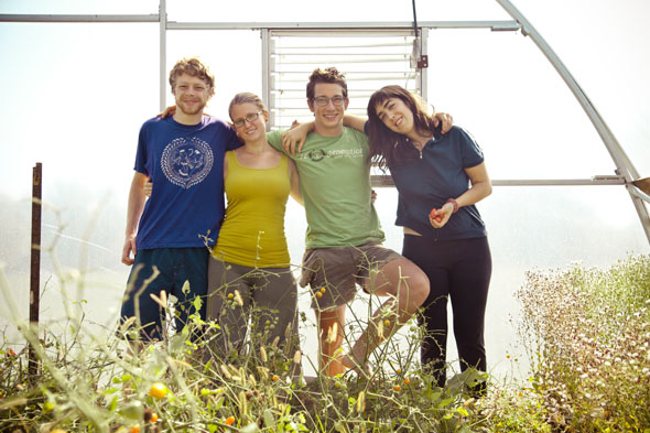 Forrest Humphrey '15, Sam Senzek '15, Justin Moore '15, and Marianthe Bickett '15 work on the Antioch Farm on the morning of Saturday, August 18. Photo by Jessica Valle.