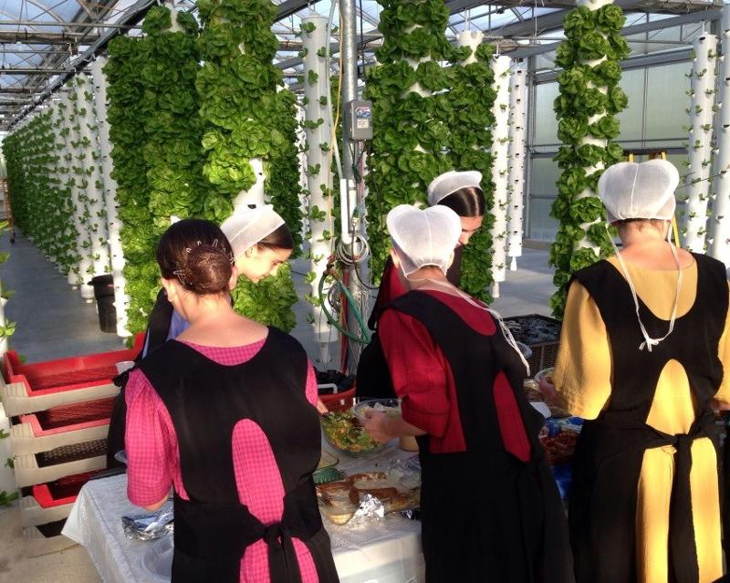 ... Garden Experience With A Tour Of Sunset View Aquaponics, The Countryu0027s  First Vertical Aeroponic Farm Located At 5541 Old Philadelphia Pike (Route  340), ...