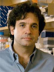 Rudi Tanzi, Ph.D.