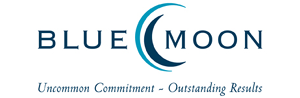 Microsoft Silver Enterprise Resource Planning Partner