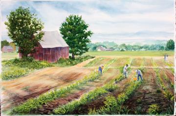 masla watecolor Hadley Farm workers