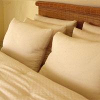 Holy  Lamb Organic Pillows
