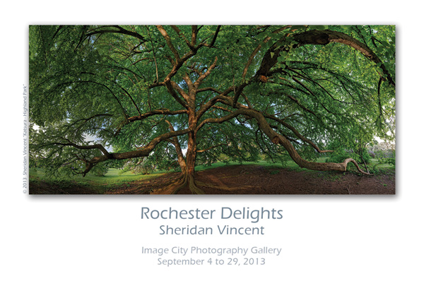 Rochester Delights Show Card
